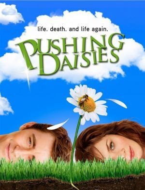pushingdaisies12112vn5.jpg